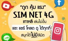 SIM NET