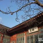 Samcheonggak cafe-13